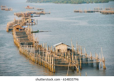 Fish farming in Thailand, aquaculture