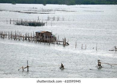 Fish farms, Fish cages at The estuary Laem Sing, Chanthaburi ,Thailand