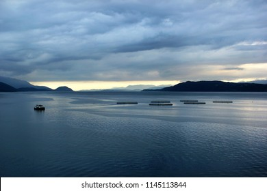 Fish farms in Hardanger fjord,  Hordaland county, Norway