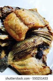 Fish fry on white background, Chanos Chanos and Catfishes fried on dish
