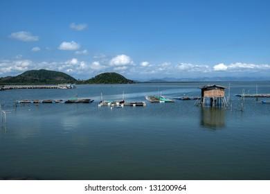 Fish Gulf of Thailand.