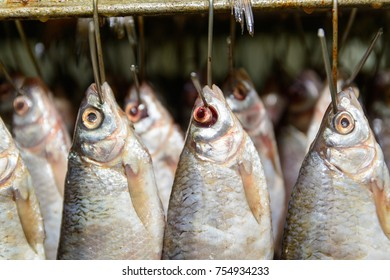 Fish hanging from hooks in the shop for the production of fish products