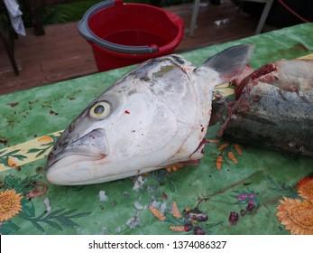 Fish head cut off