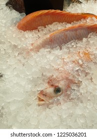 fish with ice in supermaket