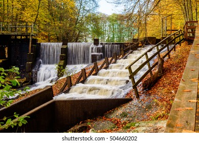 Fish ladder with rapids in fall woodland landscape. Overflow of water create waterfall in background. The river Braknean in southern Sweden.