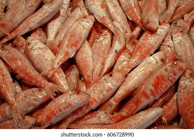 At the fish market - background shot from above