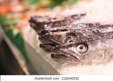 Fish market in Palma de Mallorca.
