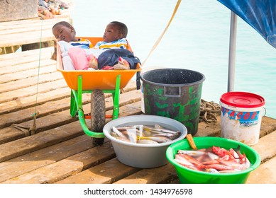Fish market, Santa Maria Pier, Sal, Cabo Verde Islands, Africa - June 16, 2019: Twin African baby boys sleep in colourful wheelbarrow on Santa Maria Pier sharing shade with buckets of fish for sale