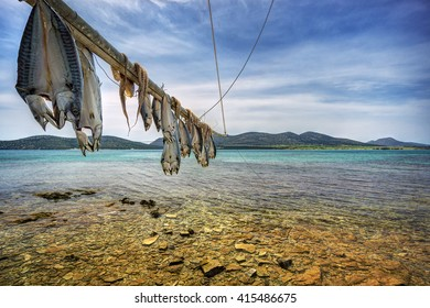 Fish and Octopus hanging to dry in Antiparos island Cyclades, Greece