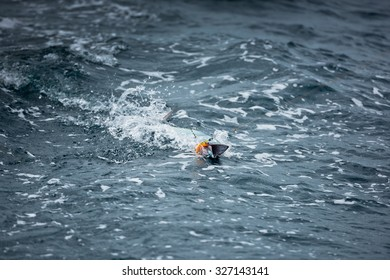 Fish on the hook in the ocean. Fishing from a sailing yacht.