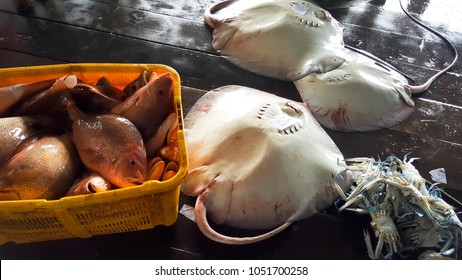 Fish and other seafood (prawn and crab) for sale at a fisherman's jetty in Nibong Tebal, Penang. The price varies according to supply for the day but a lot cheaper than buying from the market.