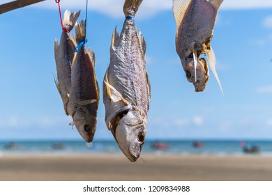Fish outdoor drying on the sun above blue sea and sky