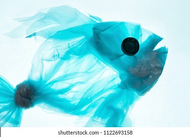 Fish from a plastic bag. Blue color, translucent. The concept of saving the environment, pollution of the oceans, seas and rivers.
