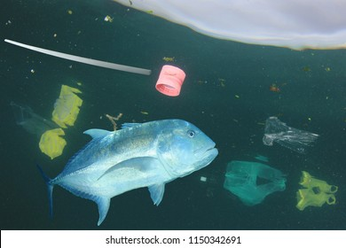 Fish and plastic ocean pollution. Plastic bags, straws and other garbage