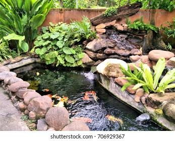 Fish pond Bali traditional garden.