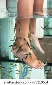 Fish reflexology. Foot fish peeling.  Garra rufa