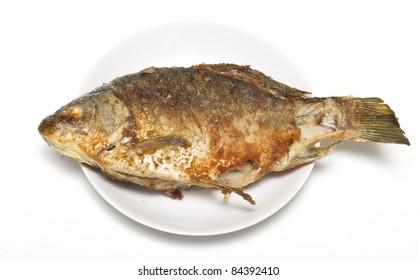 fish roasted on plate