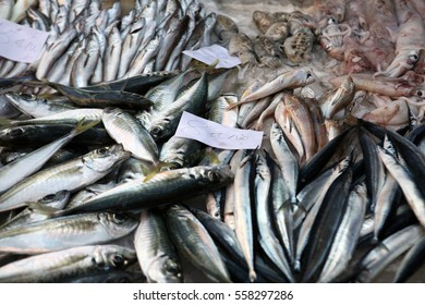 Fish for sale at Catania fish market in Sicily, Italy.