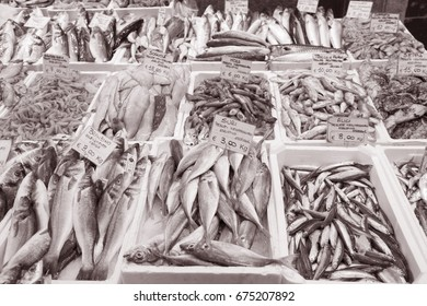 Fish for Sale on Market Stall; Bologna; Italy in Black and White Sepia Tone