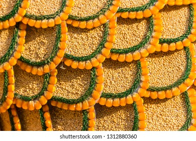 fish scale background made from small grains, corn, and leaves