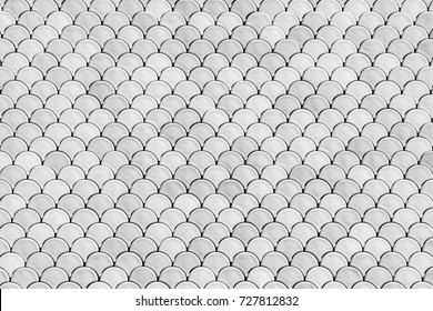Fish Scales Abstract Texture