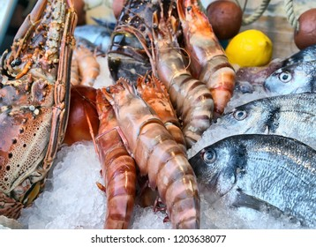 Fish and shrimp displayed on ice