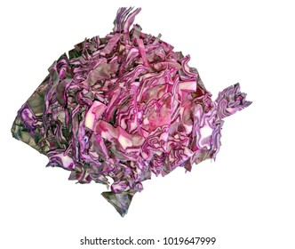 Fish silhouette made of red cabbage