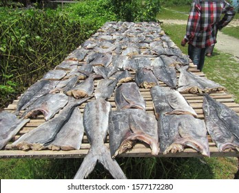 fish smoking in maldives, tuna, wahoo and sail fish.