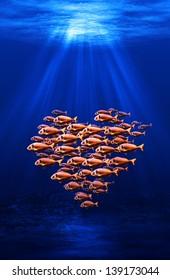 fish swarm forming a heart underwater scene