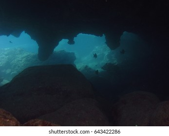 Fish swim within the narrow cavern created by lava.