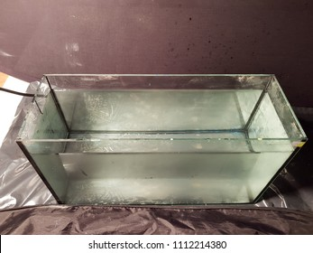 fish tank with fresh water