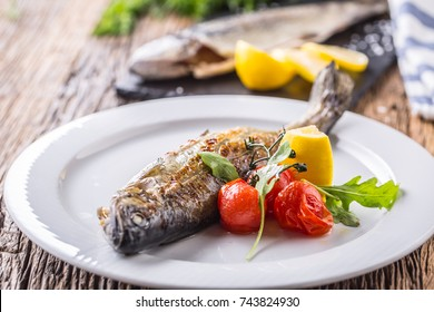 Fish trout with mushrooms and vegetable on plate in hotel or restaurant.