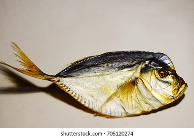 Fish Vomer. Cold smoking on a gray background. Sea fish
