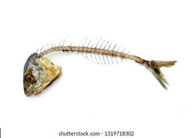 fishbone from fried mackerel rest from eating. isolated on white background.