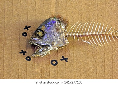 Fishbone separate brown paper background.Blank character Write text.Close-up photos.
