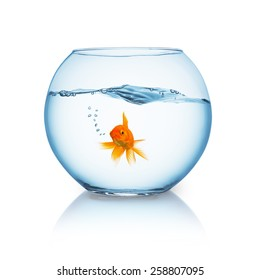 fishbowl with wavy water and a breathing goldfish