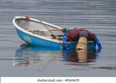 a fisherman in a blue boat is collecting oysters by a stick