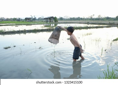 fisherman boy in the field.