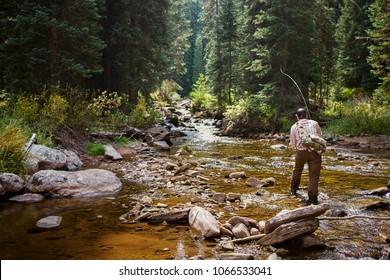Fisherman fishing in Piney River, Colorado, USA