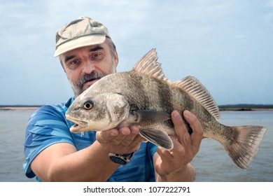 A fisherman is holding a fish  black drum (Pogonias cromis)  against the sea