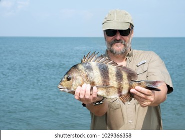 A fisherman is holding a fish  Southern sheeps head (Archosargus probatocephalus)  against the sea