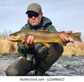 Fisherman holding trophy fish - Brown Trout