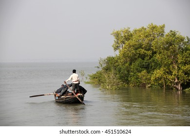 Fisherman looking for catch around a mangrove island