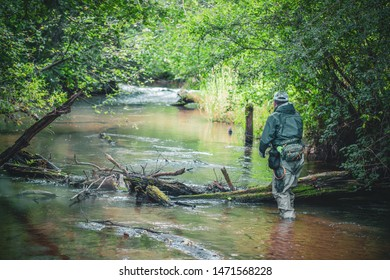 The fisherman moves along a beautiful stream. Trout fishing.