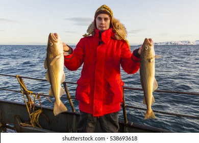 Fisherman on boat with cod in the hands