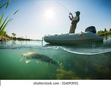 Fisherman and pike, underwater view