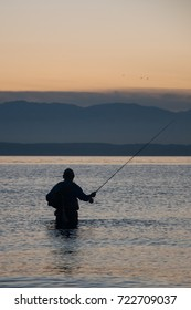 A fisherman tries to catch a fortune in the Puget Sound gulf.