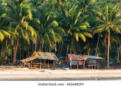 fisherman village and coconuts tree on the beach in Thailand