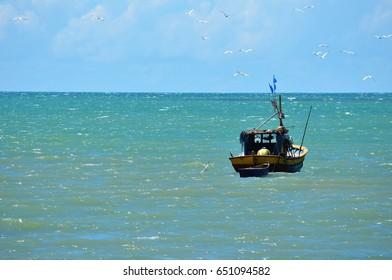 Fisherman's boat surrounded by seagulls in Porto Seguro, Bahia, Brazil.