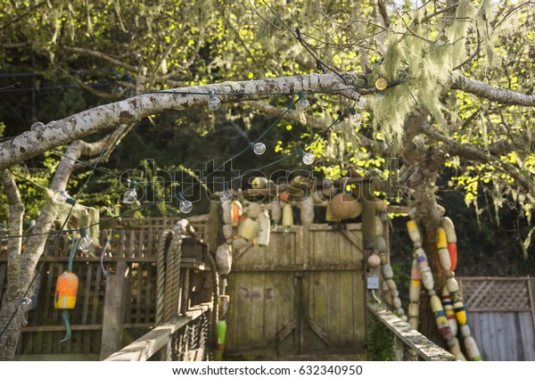 Fisherman's house entry with buoys hanging from door on coast with wooden door and tree with string lights